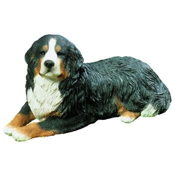 Mid Size Bernese Mountain Dog Ms09701 2799 Sandicast Life